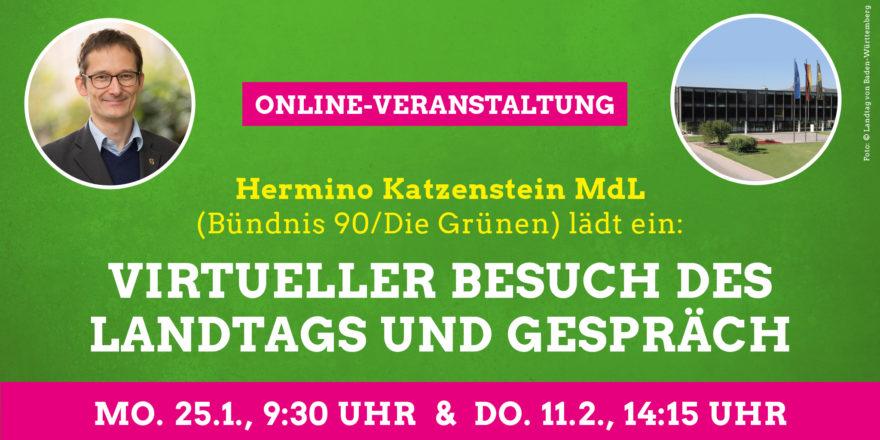 Virtuelle Landtagsbesuche mit Abgeordnetengespräch am 25.01.2021, 09:30 Uhr und 11.02.2021, 14:15Gehe zu
